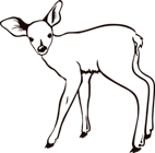 http://images.clipshrine.com/getimg/PngMedium-fawn-outline-10430.png